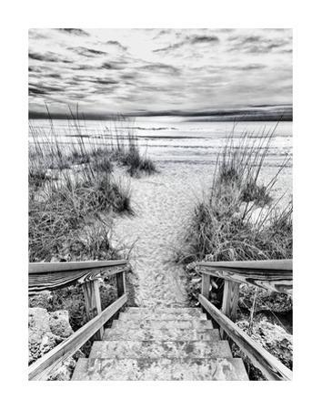 Follow the Steps by Mary Lou Johnson