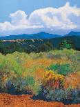 Juniper Hills-Mary Silverwood-Art Print