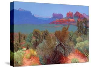 High Desert by Mary Silverwood