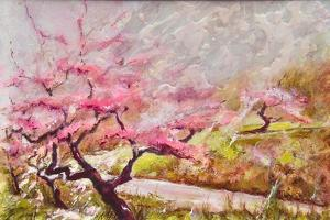 Almond Blossom In The Mountains by Mary Smith