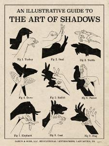 The Art of Shadows X by Mary Urban