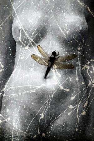 Torso/Dragonfly by Mary Woodman