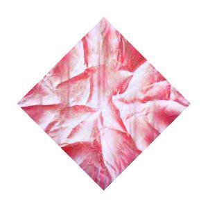 Loose Pink. The Wind Carries Spring Warmth by Masaho Miyashima