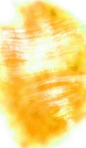 Nirvana: A Yellow Flower Becomes a Yellow Wind by Masaho Miyashima