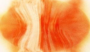 NIRVANA?Exploding Mandarin Orange by Masaho Miyashima
