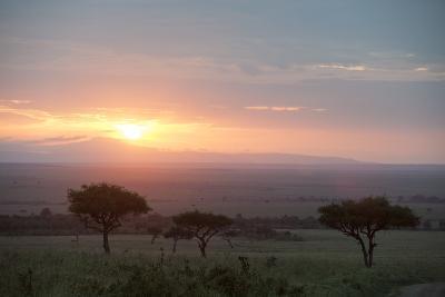 Masai Mara, Kenya, East Africa, Africa-Sergio Pitamitz-Photographic Print