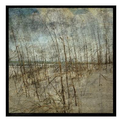Masonboro Island No. 6-John W^ Golden-Art Print