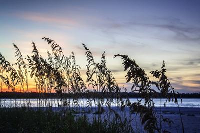 Masonboro Sunset II-Alan Hausenflock-Photographic Print