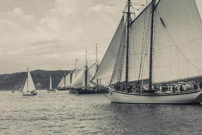 Massachusetts, Schooner Festival, Schooners in Gloucester Harbor-Walter Bibikow-Photographic Print