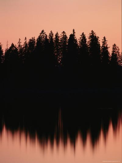 Massed Dark Evergreens Beneath a Rosy Sky Reflected in a Lake-Mattias Klum-Photographic Print
