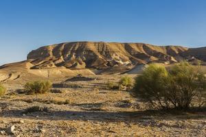Negev Desert, Landscape by Massimo Borchi