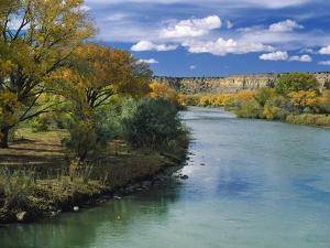 View of Animas River, New Mexico, USA by Massimo Borchi