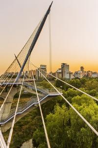 Yeouido, the Saetgang Ecological Park, a Wild Wetland among the Skyscrapers, the Saetgang Bridge (F by Massimo Borchi