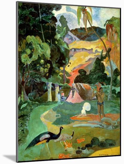 Matamoe Or, Landscape with Peacocks, 1892-Paul Gauguin-Mounted Premium Giclee Print