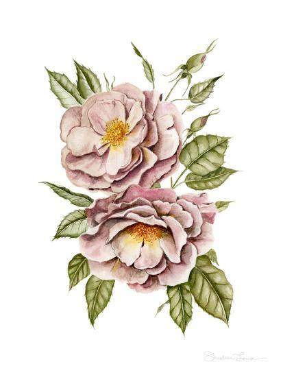 Matangi Roses-Shealeen Louise-Giclee Print