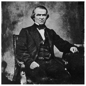 Andrew Johnson, 17th President of the United States, 1860S by MATHEW B BRADY