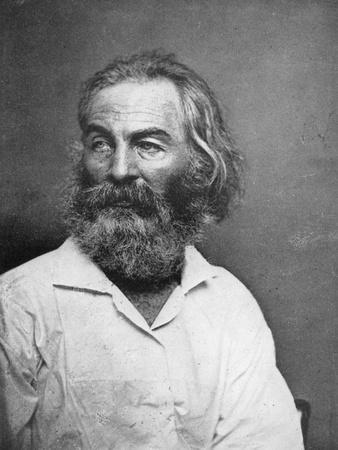 Walt Whitman (1819-189), American Poet, C1880S
