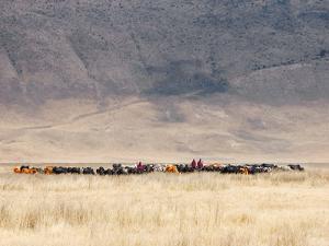 Incredible Maasai by Mathilde Guillemot