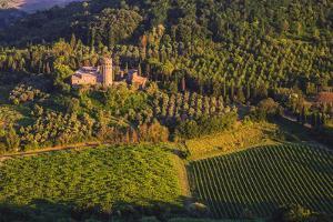 Itallian Vinyard And Castle by Matias Jason