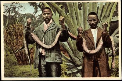 Matlala Südafrika, Gefährliche Jagdbeute, Einheimische Erlegen Boa Constrictor--Giclee Print