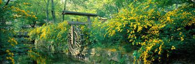 https://imgc.artprintimages.com/img/print/matsuo-taisha-shrine-saikyo-ku-kyoto-japan_u-l-pnuwql0.jpg?p=0