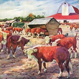 """Cattle in Barnyard,""October 1, 1945 by Matt Clark"