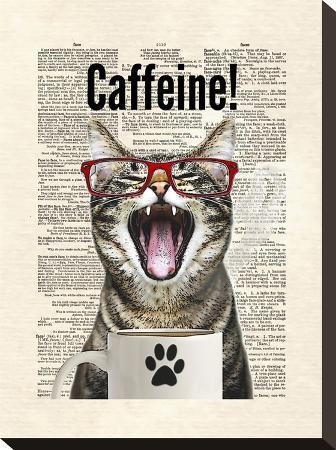 matt-dinniman-cat-caffeine