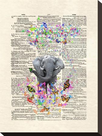 matt-dinniman-elephant-butterflies