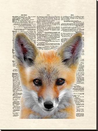 matt-dinniman-fox-face