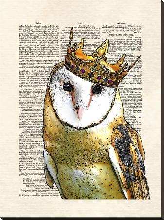 matt-dinniman-owl-king