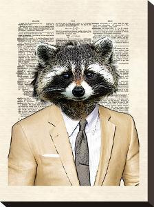 Raccoon by Matt Dinniman