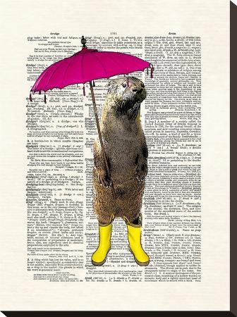 matt-dinniman-rainy-day-otter