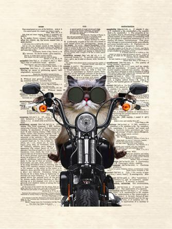 Roxie Motorcycle by Matt Dinniman