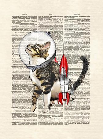 Space Cat by Matt Dinniman