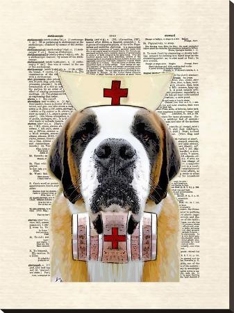 matt-dinniman-st-bernard-nurse