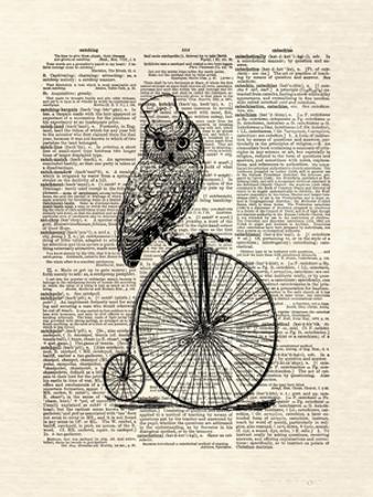 Top Hat Owl by Matt Dinniman