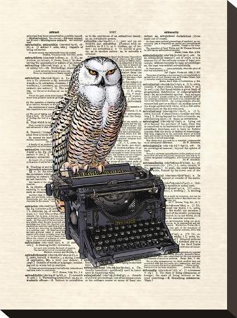matt-dinniman-typewriter-owl