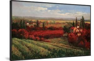 Tuscan Fields of Red by Matt Thomas