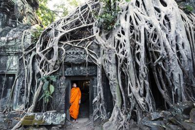 Cambodia, Siem Reap, Angkor Wat Complex. Buddhist Monk Inside Ta Prohm Temple (Mr)