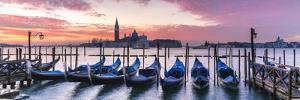 Italy, Veneto, Venice. Row of Gondolas Moored at Sunrise on Riva Degli Schiavoni by Matteo Colombo