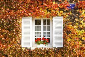 Typical Window Surrounded by Vine in Autumn, Champagne Ardenne, France by Matteo Colombo
