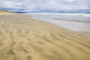 90 Mile Beach, Northland, North Island, New Zealand, Pacific by Matthew Williams-Ellis