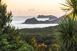 Bay of Islands Coastline at Sunrise, Seen from Russell, Northland Region, North Island, New Zealand by Matthew Williams-Ellis