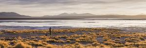 Chalviri Salt Flats (Salar De Chalviri) at Sunrise, Altiplano of Bolivia by Matthew Williams-Ellis