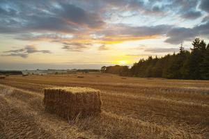 Hay Bale at Sunset, Broadway, the Cotswolds, Gloucestershire, England, United Kingdom, Europe by Matthew Williams-Ellis