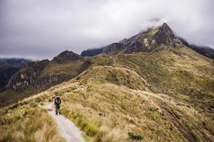 Hiker Trekking Rucu Pichincha Volcano, Quito, Pichincha Province, Ecuador, South America by Matthew Williams-Ellis