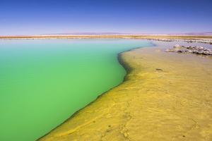 Laguna Cejar (Floating Salt Lake Lagoon), Atacama Desert, North Chile, Chile, South America by Matthew Williams-Ellis