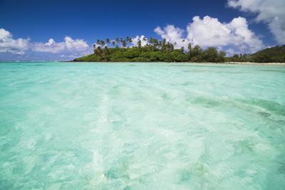Motu Taakoka Seen from Muri Lagoon, Rarotonga, Cook Islands, South Pacific, Pacific by Matthew Williams-Ellis