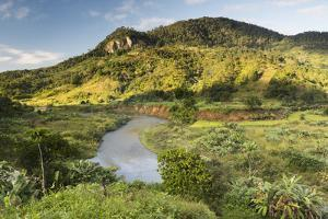Namorona River, Ranomafana National Park, Madagascar Central Highlands, Madagascar, Africa by Matthew Williams-Ellis