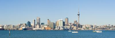 Panorama of the Auckland City Skyline, Auckland, North Island, New Zealand, Pacific by Matthew Williams-Ellis